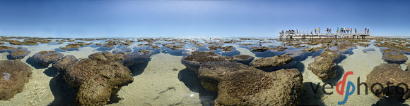 Stromatolites in Shark Bay, Flagpole Landing. Equirectangular projection of HDR panorama